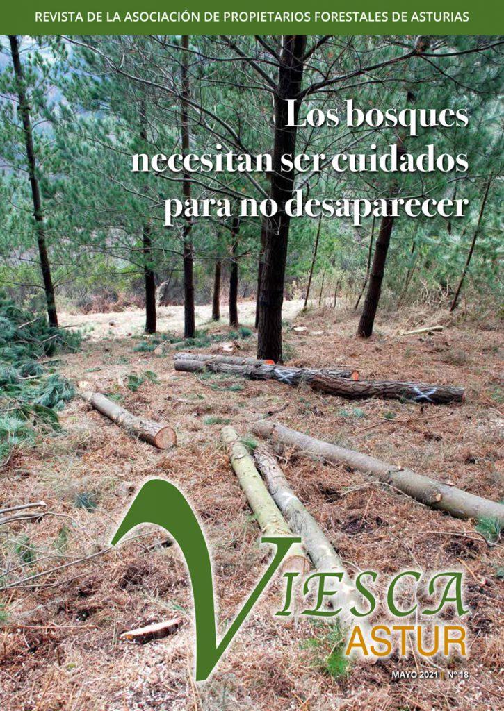 Revista Viesca Astur - nº 18 Mayo 2021